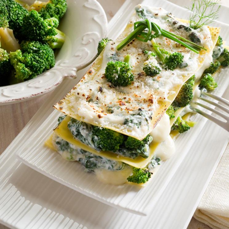 receta de lasaña de brocoli