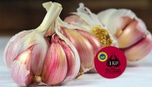 El ajo morado de la Pedroñeras es reconocido como el ajo de mayor calidad del mundo. Su aroma y sabor lo convierten en un referente en todas las cocinas.
